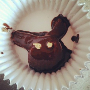 Chocolate+PB bunny (a little creepy-looking, but still cute!)