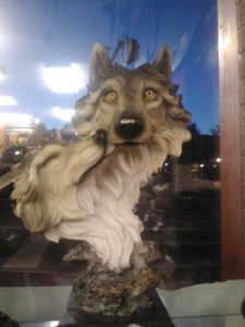Awkward wolves at a gift shop in town. It's been a running joke in our family for a few years.
