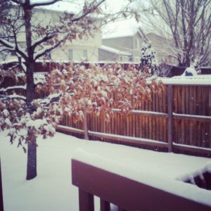 Snow is the bane of my existence...but it is really pretty. #ohtheweatheroutsideisfrightful