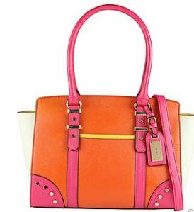 Casalserugo colorblock purse (ALDO).